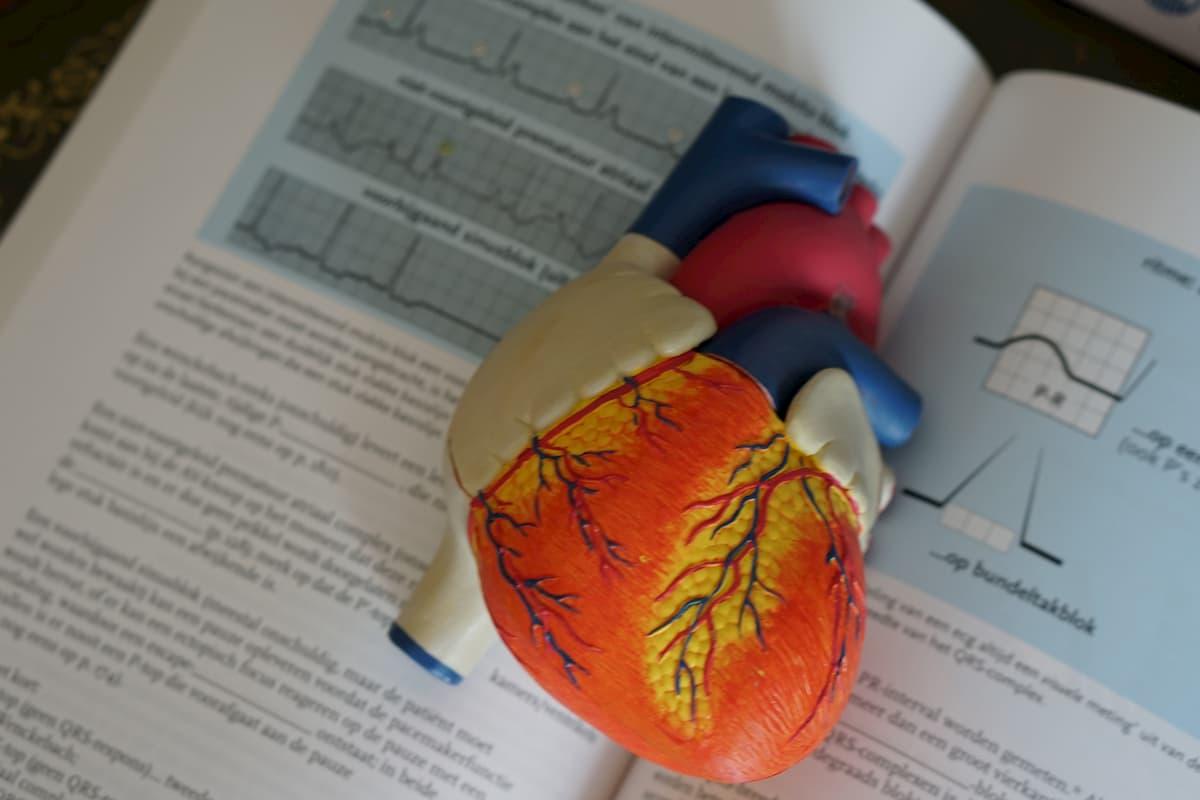 hipertenzijos stadija