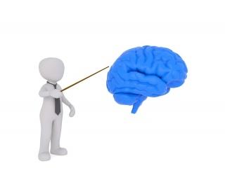 Lėtinė smegenų išemija - Hipertenzija November