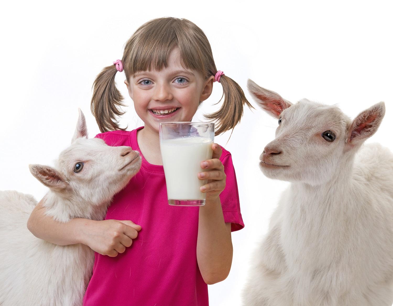 Pienas: gerti ar negerti? - DELFI Gyvenimas