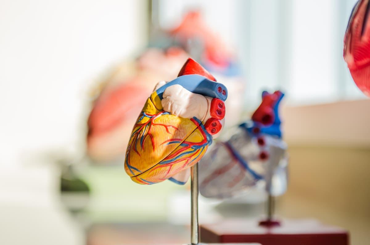 hipertenzija gydomi vaistai naujausi Evdokimenko knyga apie hipertenziją