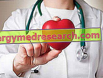 širdies širdies sveikatos komponentai
