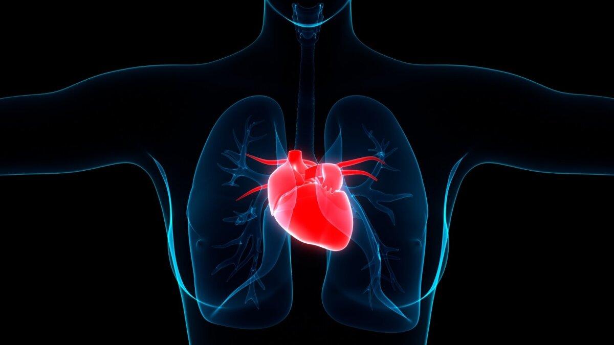 sveikatos ligos ir būklės širdis