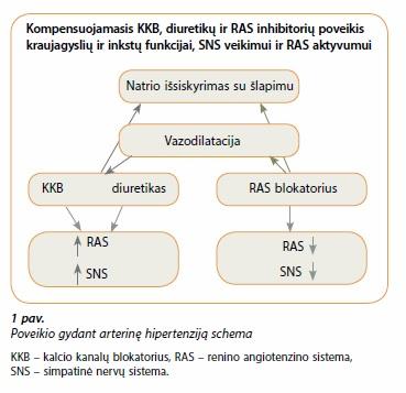 hipertenzijos reguliavimo sistema)