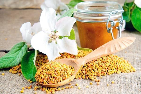 Bičių pikis: kuo naudingas, kaip naudoti (plius bičių pikio užpiltinės receptas)   Medaus namai