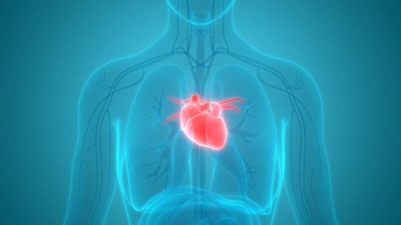 2 laipsnio hipertenzija yra širdies ir kraujagyslių liga