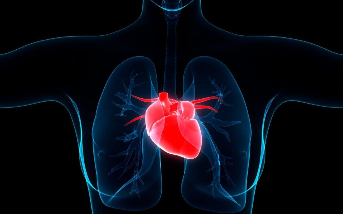 regėjimo organo liga su hipertenzija