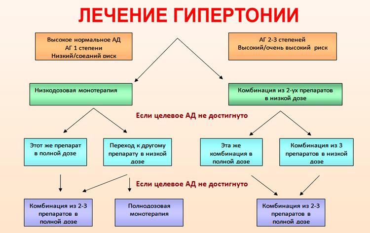 hipertenzijos gydymas periwinkle)