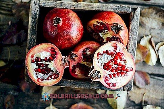 granatų širdies sveikata Majamio širdies sveikatos instituto dieta