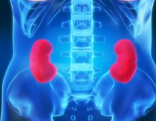 hipertenzija dializuojant inkstus)