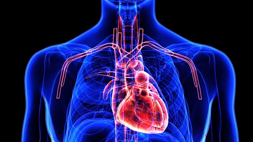 gerų dalykų širdies sveikatai hipertenzija priepuoliui palengvinti