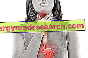 Aukštas spaudimas kosuliuojant - Endokarditas
