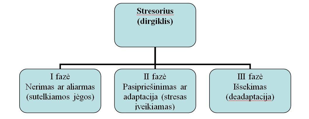 Stresas neigiamai veikia sveikatą: 7 būdai, kaip jį malšinti