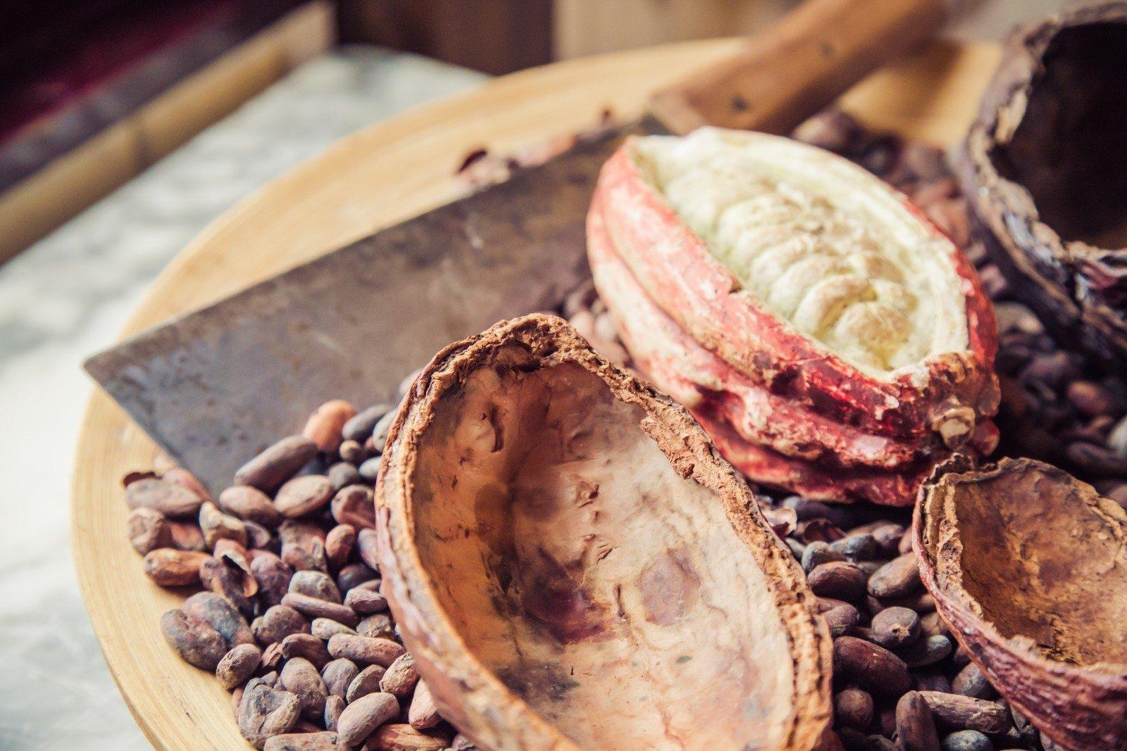 Šokolado poveikis širdžiai: moterims tai nepatiks - DELFI Sveikata