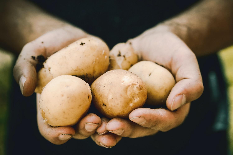 hipertenzija keptos bulvės