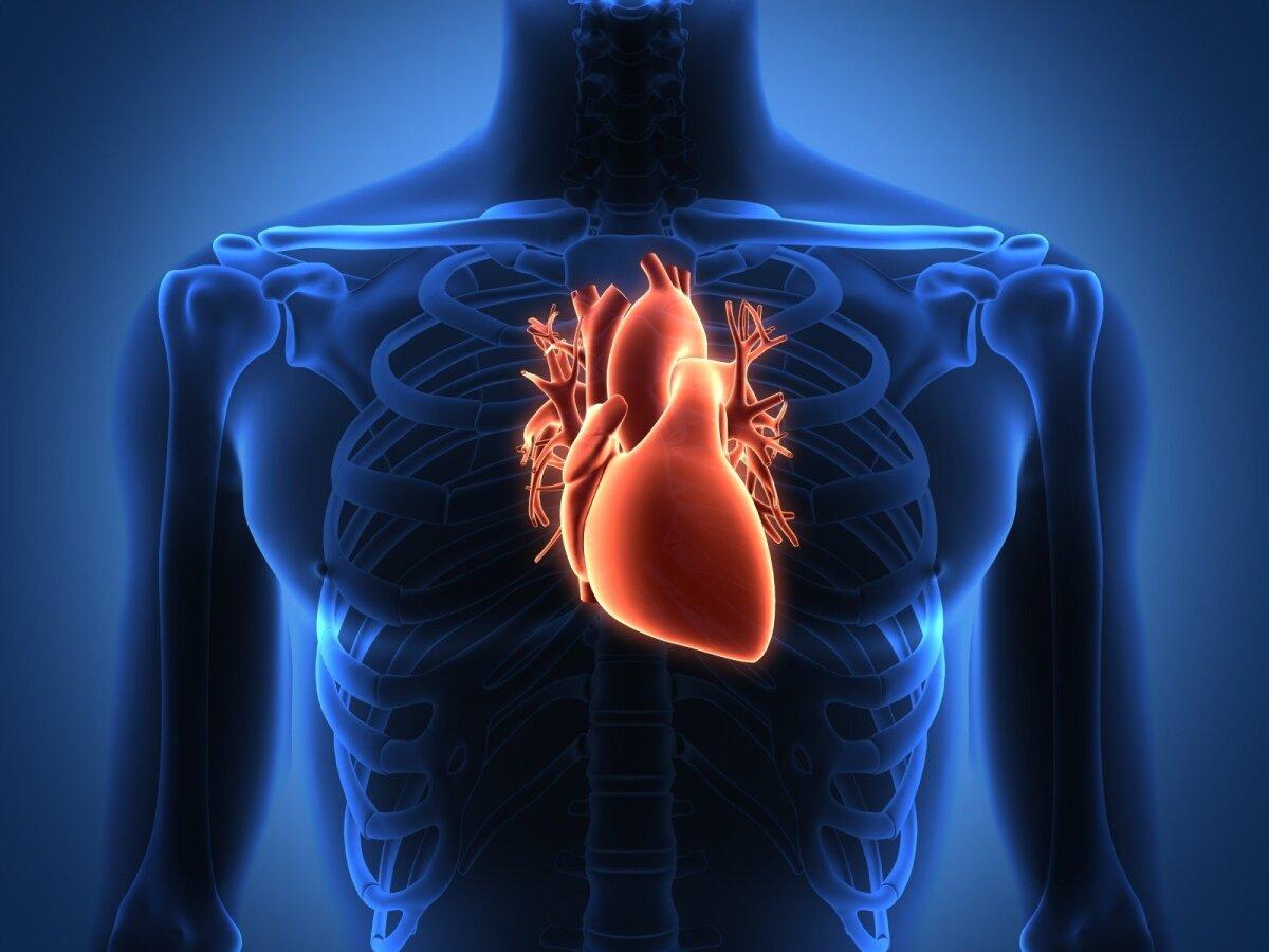 naujos moterų širdies sveikatos gairės