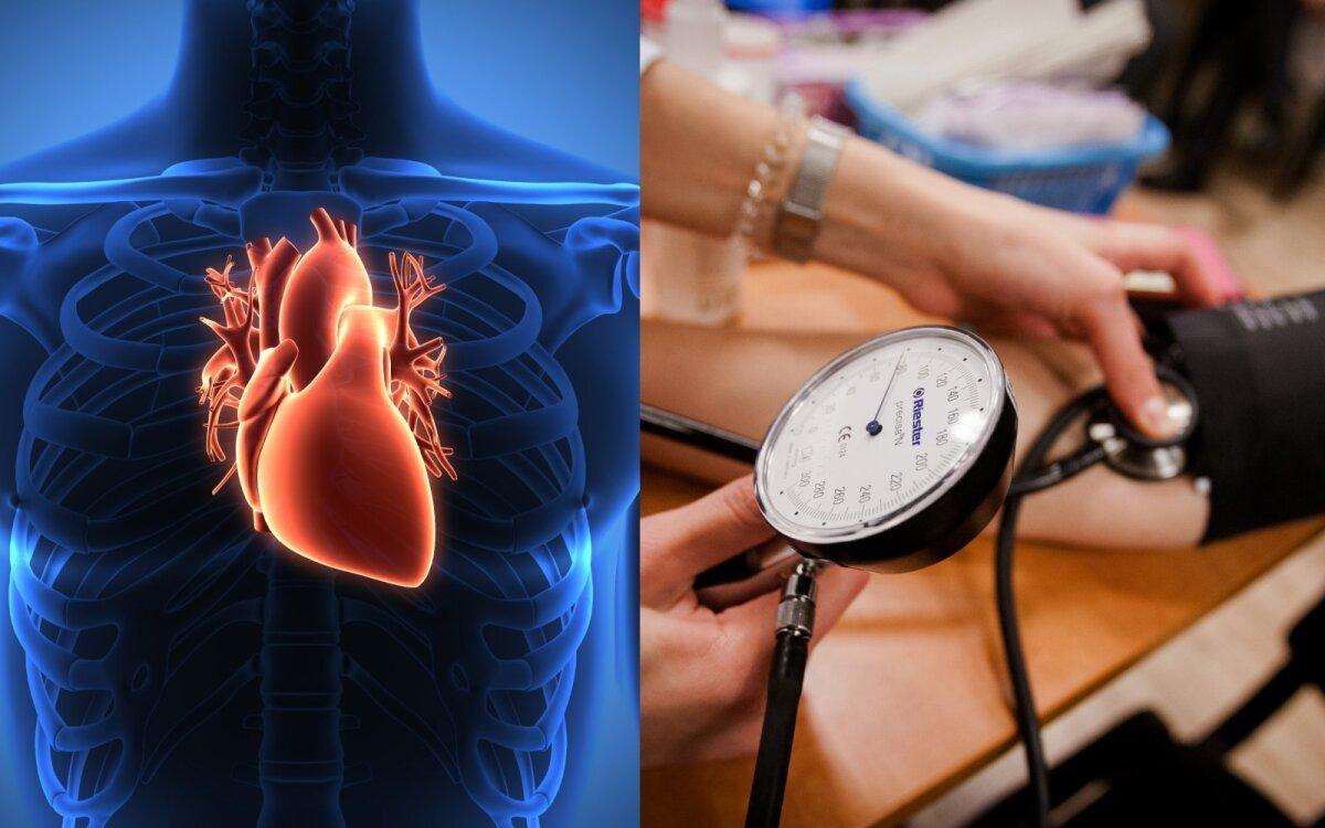 kaip treniruoti hipertenzija sergančią širdį ir kraujagysles)