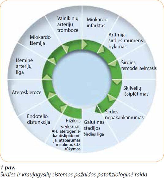 produktų, vartojamų nuo hipertenzijos)
