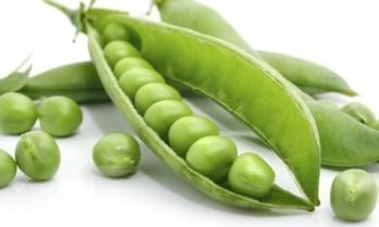 Lengvai užauginamos daržovės, kurios mažina kraujo spaudimą - Geltonas Karutis