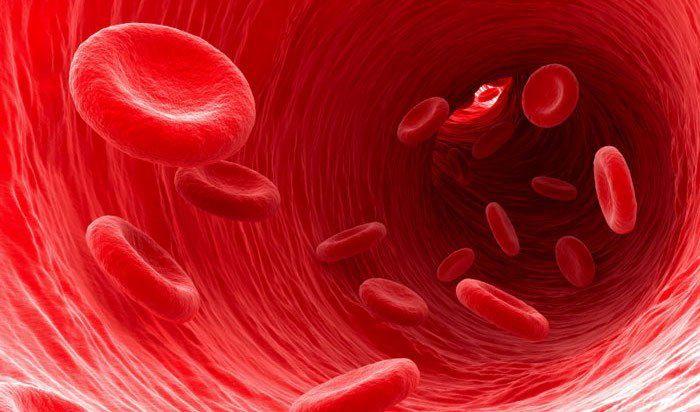 hipertenzijos kraujagyslės susiaurėja