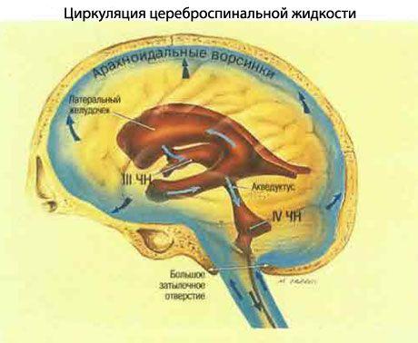 staigus apakimas su hipertenzija vaistai naujos kartos hipertenzijai gydyti