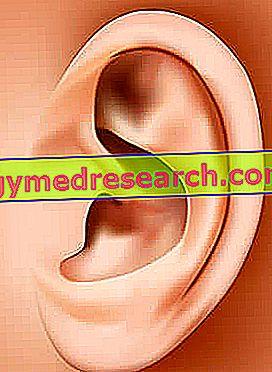 hipertenzija užsikimšusi ausis