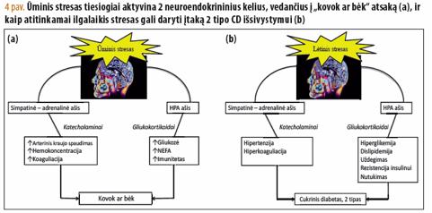 streso poveikis hipertenzijai