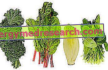 Vitaminas, kurio trūkumas sukelia tragiškas pasekmes: svarbu nepavėluoti - DELFI Sveikata