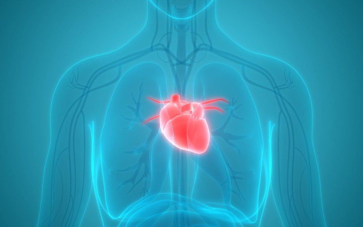 širdies sveikata vyresnėms nei 50 metų moterims