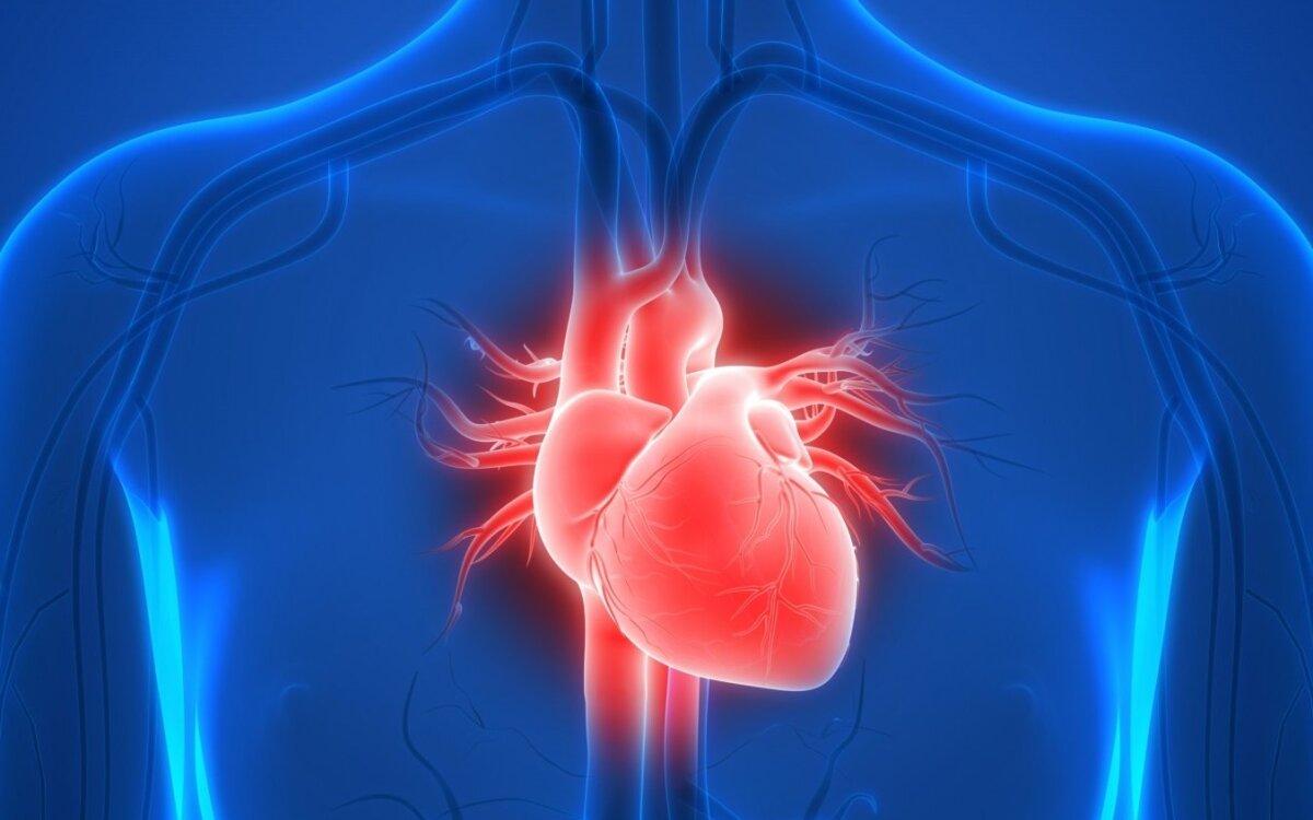 išbandyti savo širdies sveikatą