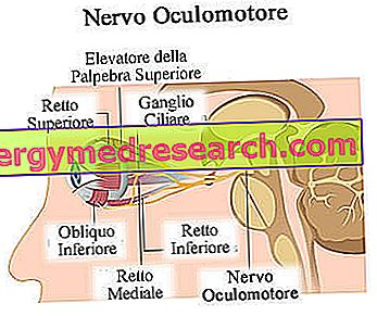 makšties nervas ir hipertenzija