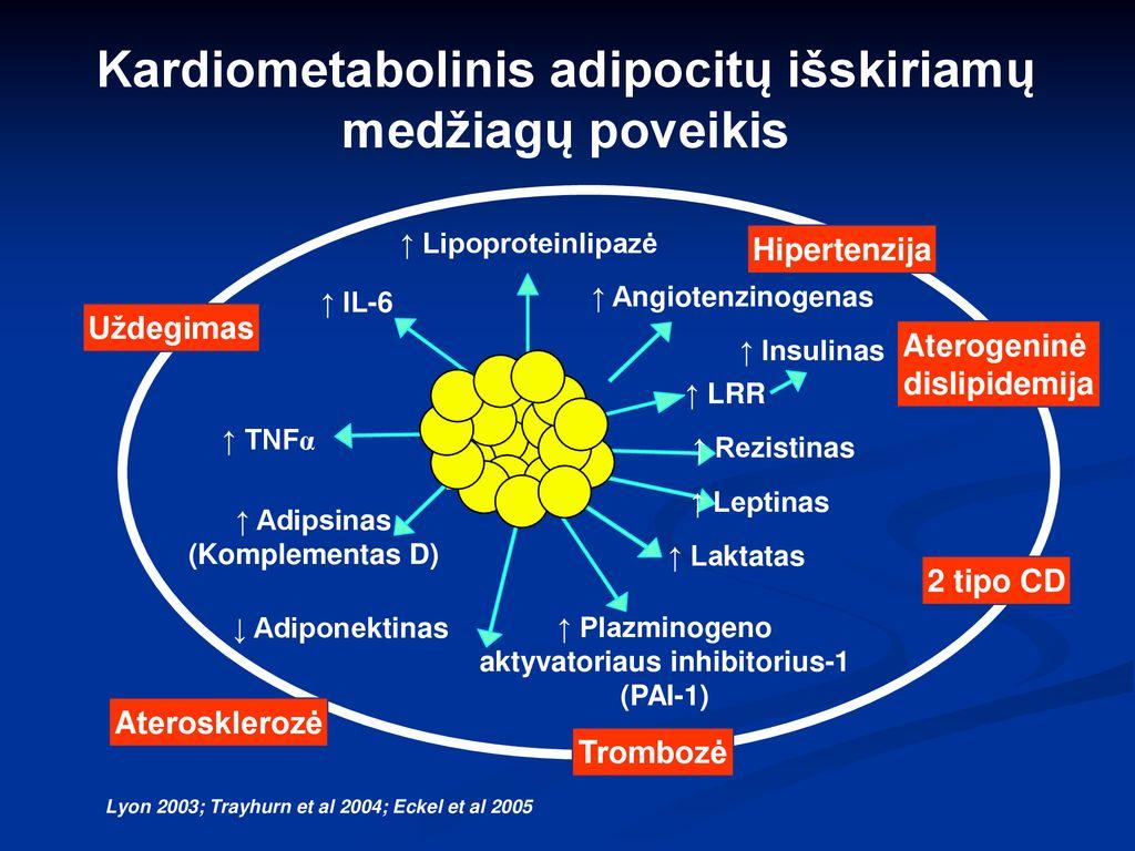 2 rizika dėl 2 laipsnio hipertenzijos galingi vaistai nuo hipertenzijos