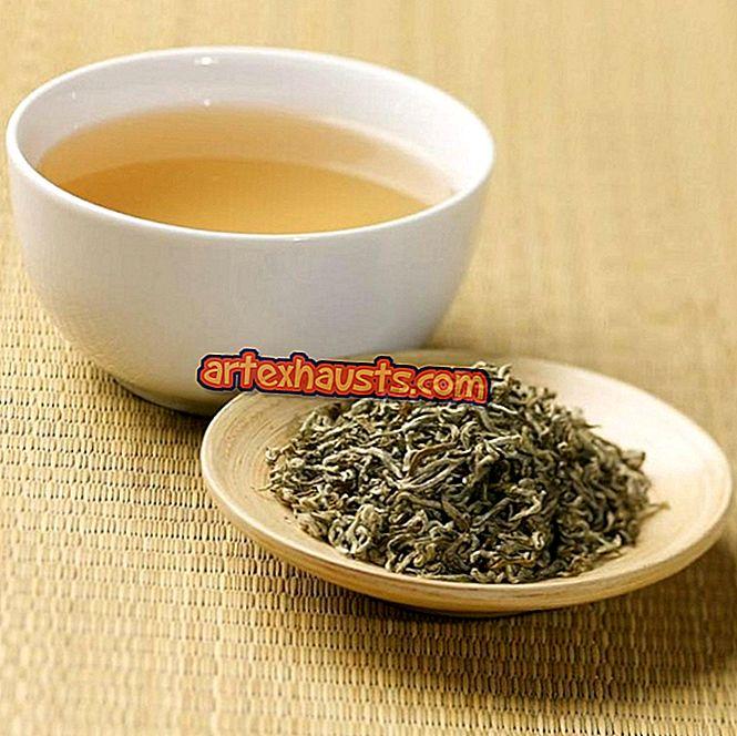 Baltoji arbata