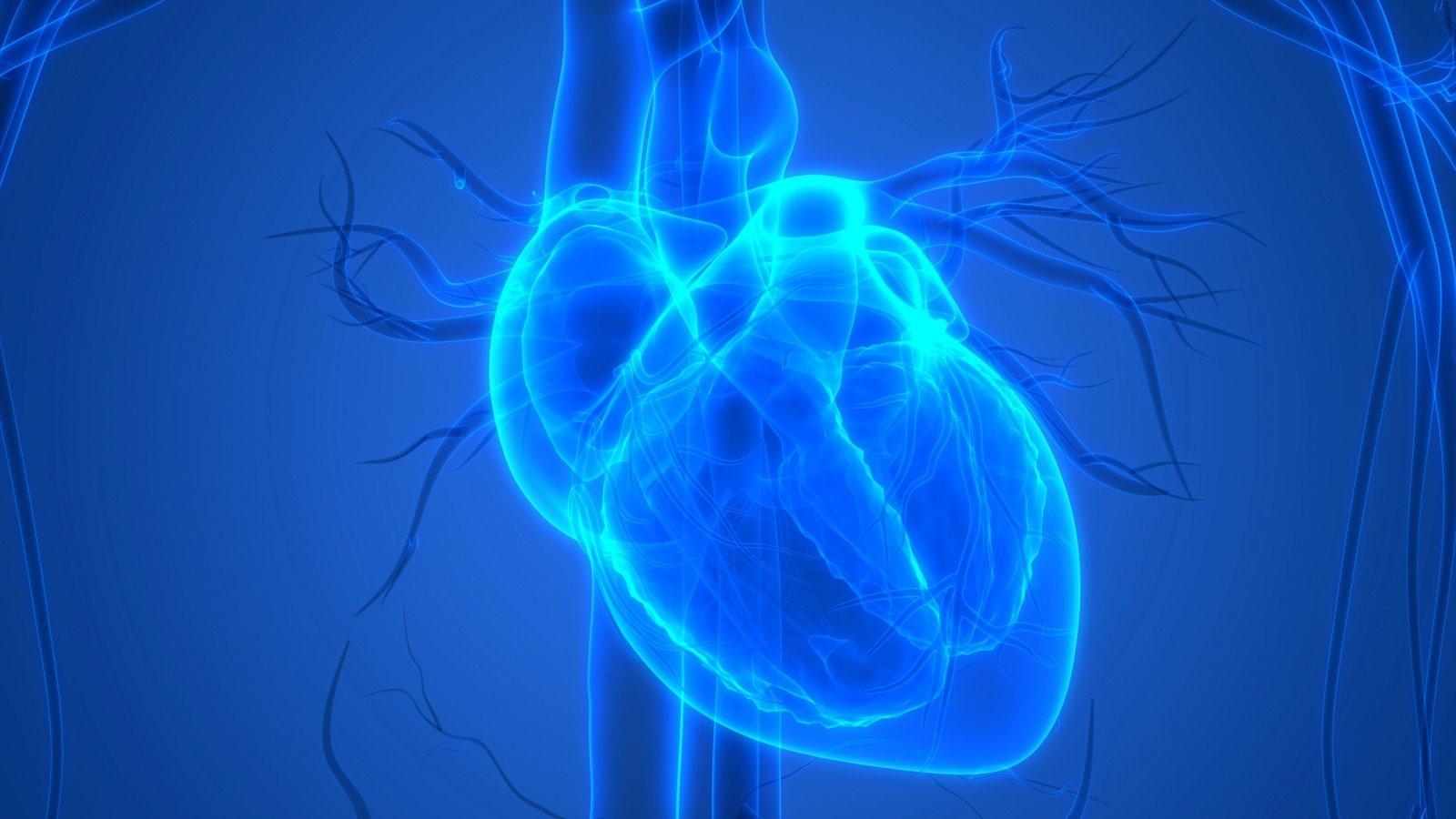 minimalus širdies širdies sveikata