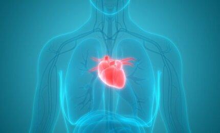 moterų sveikatos širdies priepuolis)