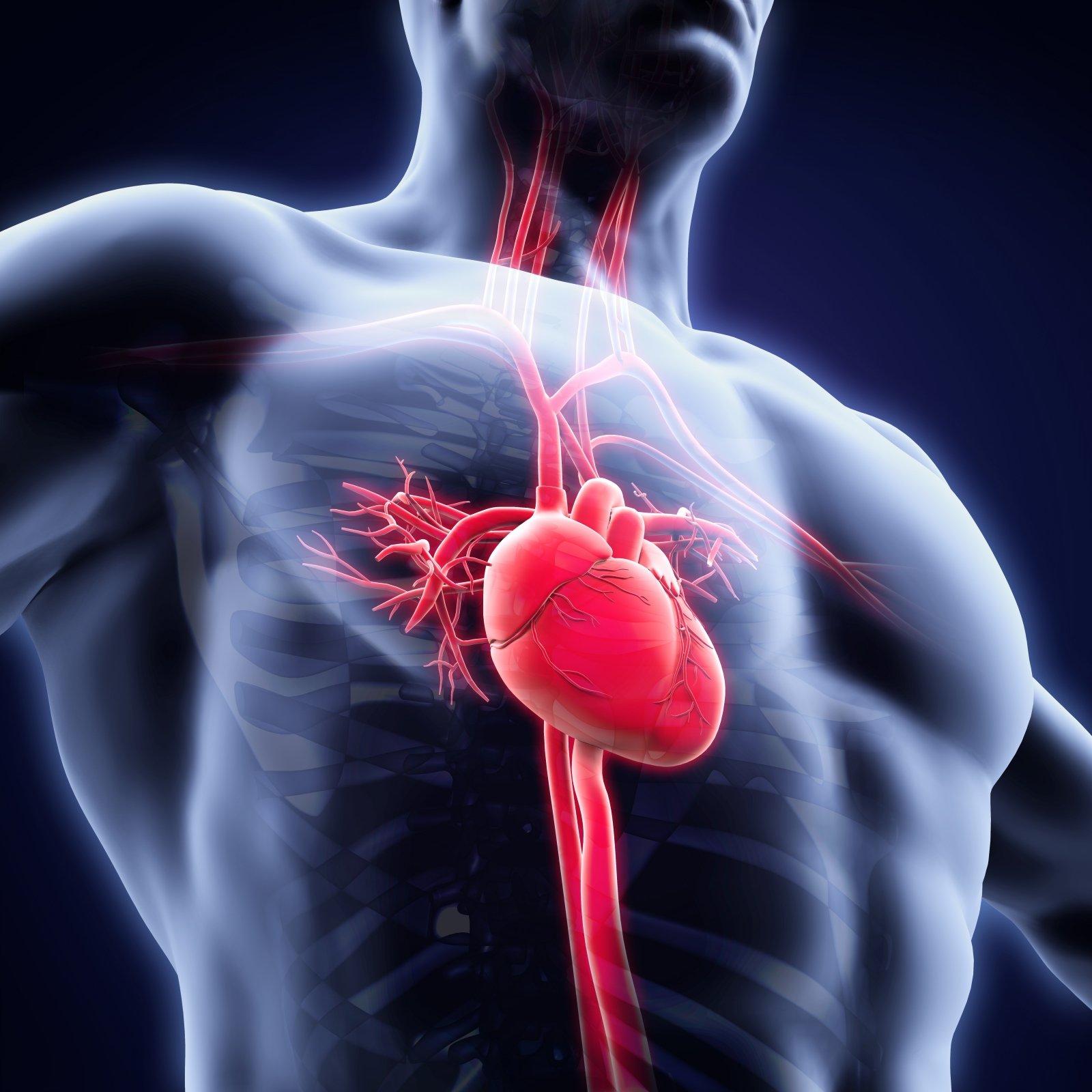 hipertenzija ir kraujo krešulys