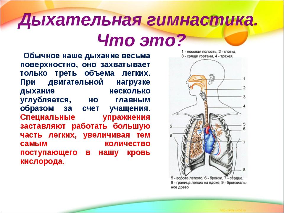 ar galima daryti gimnastiką su hipertenzija)