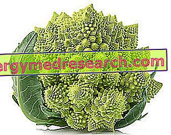 aronijos hipertenzijos receptams)