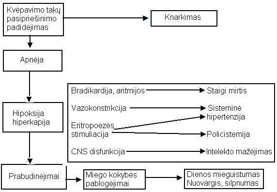 hipertenzija miego dieną)