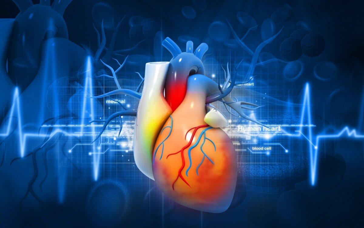 naudinga sveikatai širdies magnis