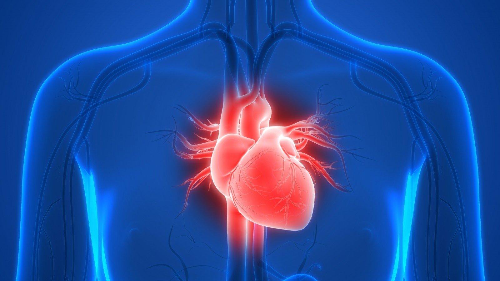 kaip skatinti širdies sveikatą