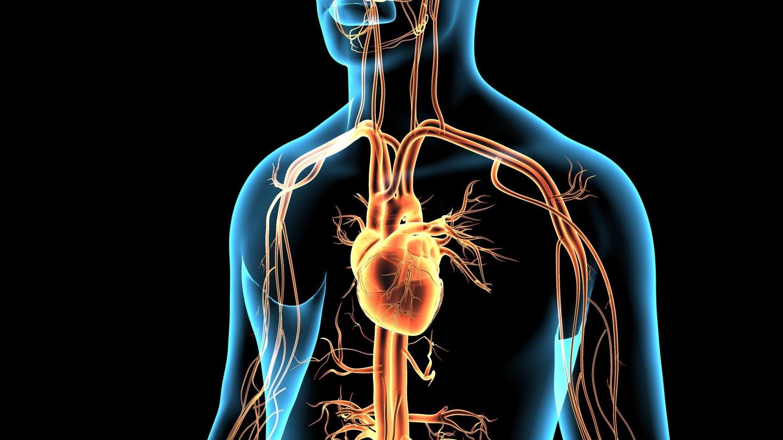 geriausia širdies sveikata kokio slėgio metu diagnozuojama hipertenzija