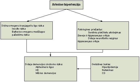 hipertenzija pagrindinės ligos priežastys