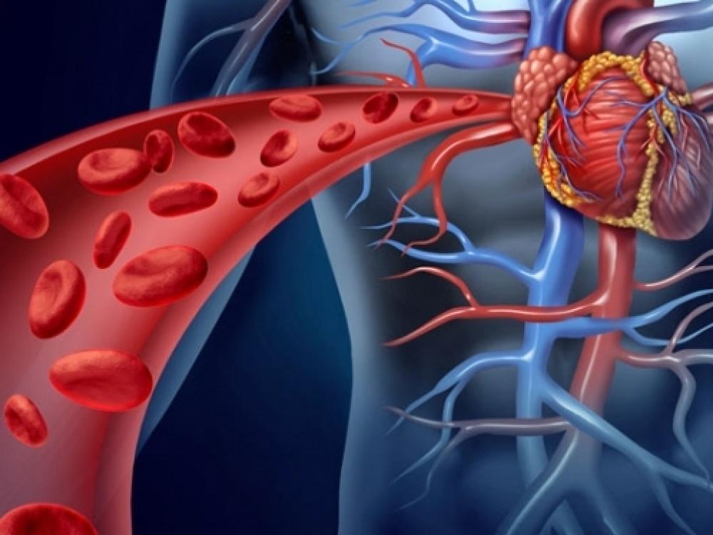 kraujagyslių pokyčiai su hipertenzija