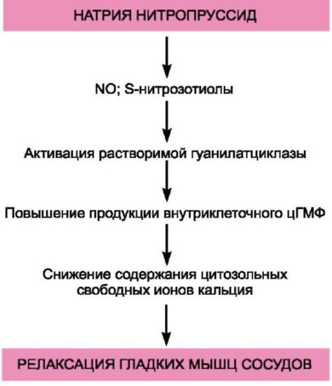 sinupretas ir hipertenzija