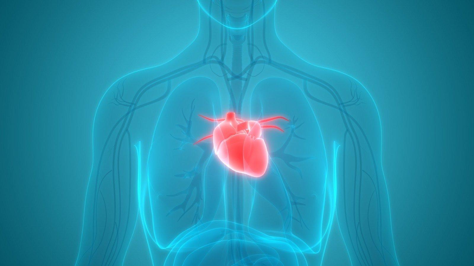 stiprinti sveikatą sergant širdies ligomis ir insultu