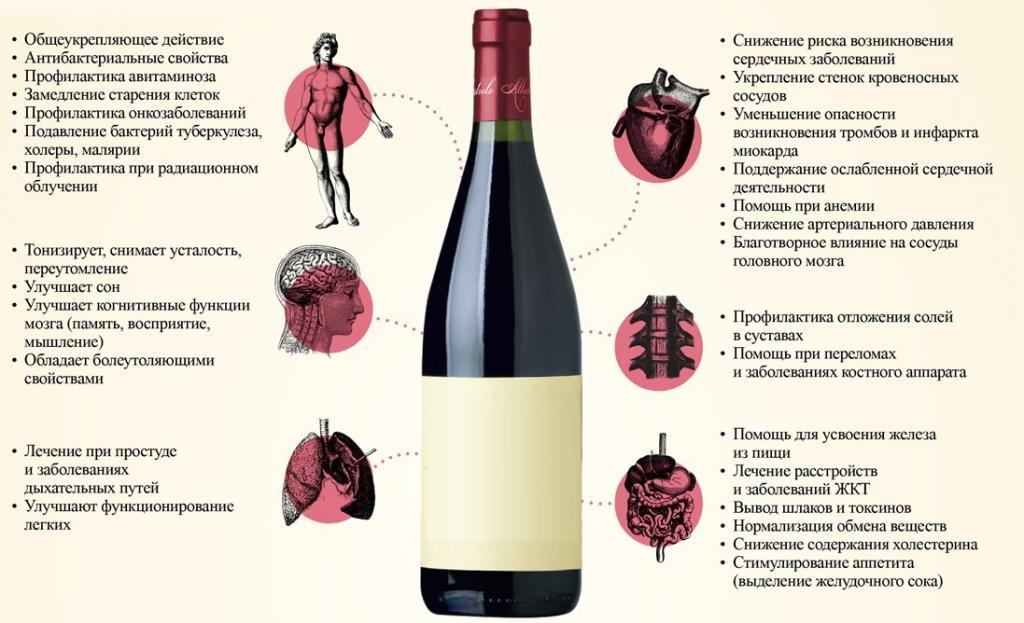 vyno alaus širdies ligų prevencija vyrų sveikata)